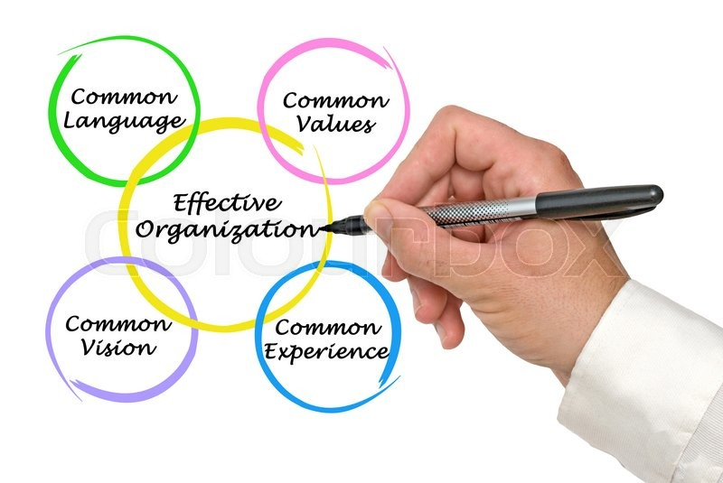 Stock image of 'Diagram of Effective Organizations'