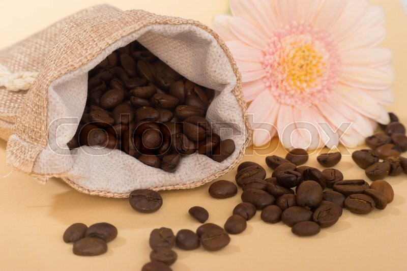 Stock image of 'Pouch of coffee grains on caramel background decorated with pink gerbera flower'