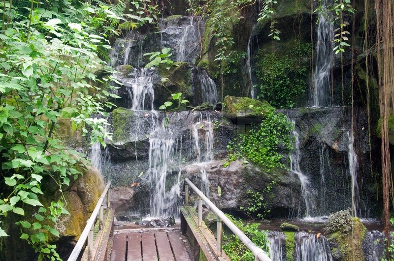 Wasserfall im Burgers Zoo in Holland | Stockfoto | Colourbox