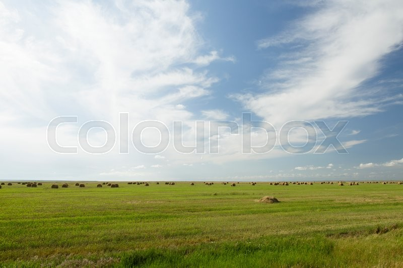 Stock image of 'stack of hay lying in a field after harvest on a summer day'