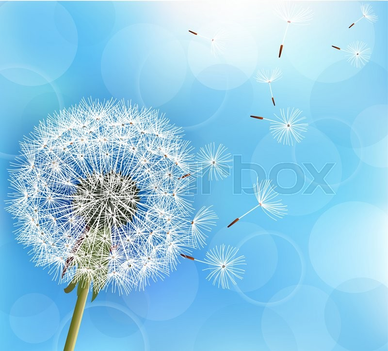 Trendy Nature Light Blue Background ...