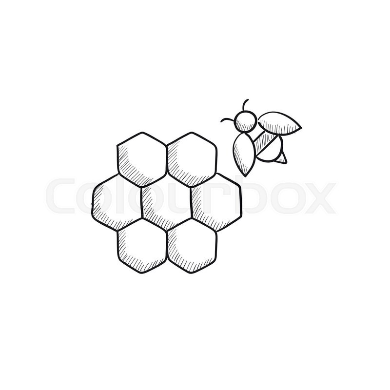 honeycomb and bee sketch icon for web  mobile and honey clipart black and white honey clipart black and white
