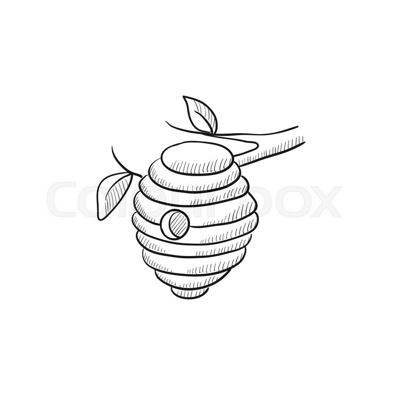 Bee Hive Sketch Icon For Web Mobile And Infographics Hand Drawn Vector Isolated On White Background