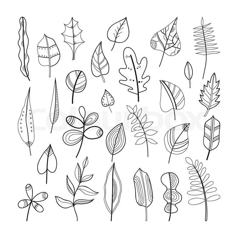Set of doodle leaves, plants for coloring book. Vector illustration ...