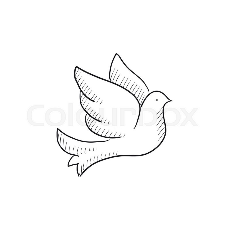 wedding dove vector sketch icon isolated on background hand drawn wedding dove icon wedding dove sketch icon for infographic website or app