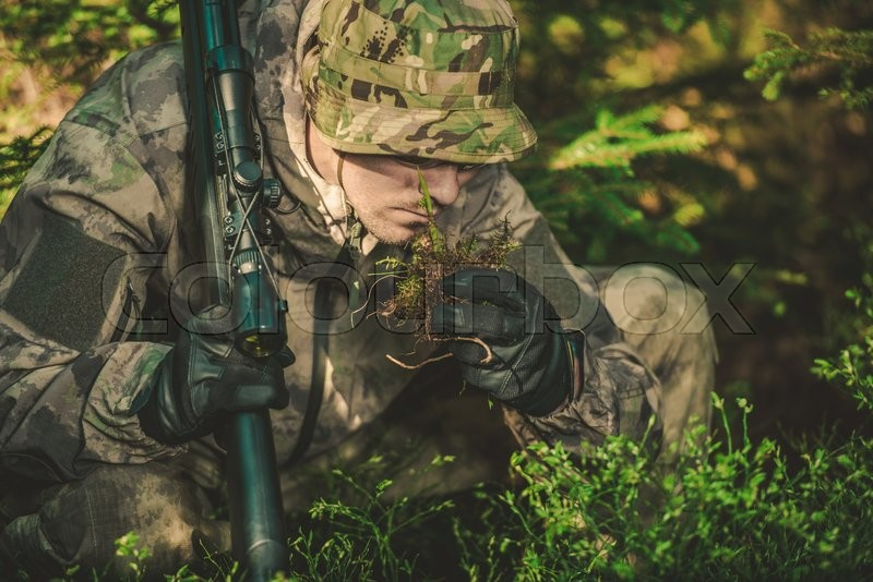 Stock image of 'Tracker Looking For Any Signs of Followed Person or Wildlife. Person Specializing in Tracking. Finding and Following a Trail'