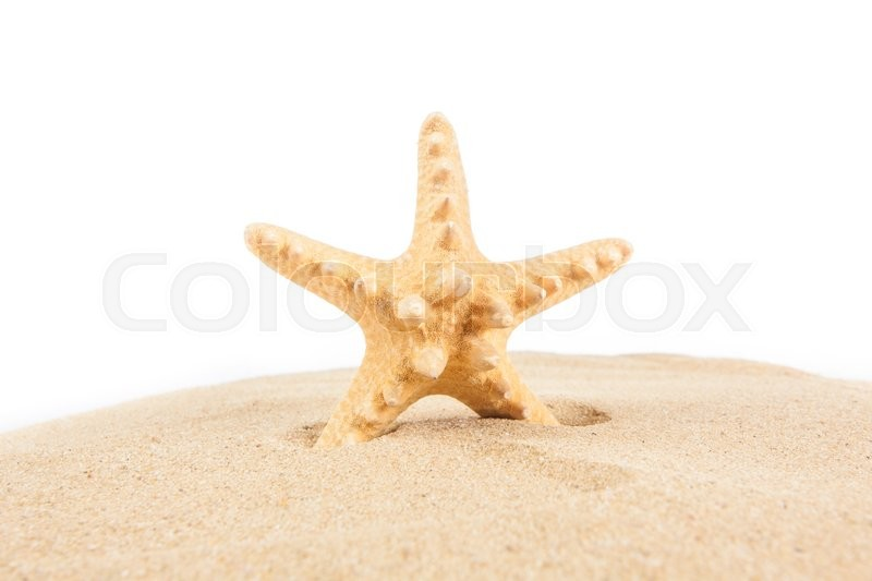 Stock image of 'Starfish on the Sand. Vacation concept'