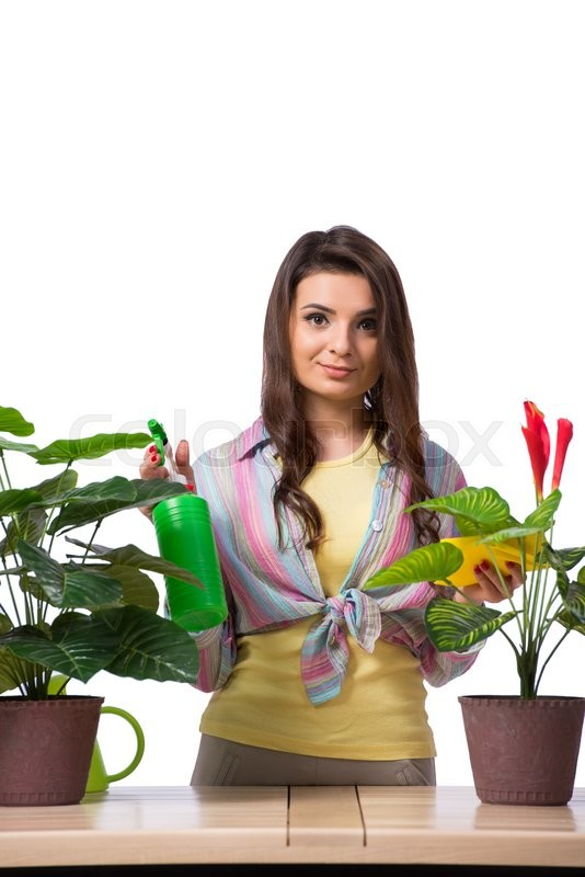 Stock image of 'Woman taking care of plants isolated on white'