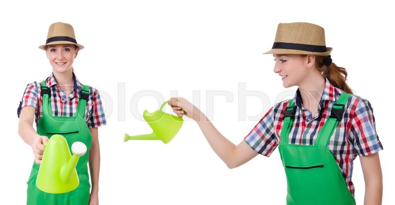 Stock image of 'Collage of woman watering plants isolated on white'