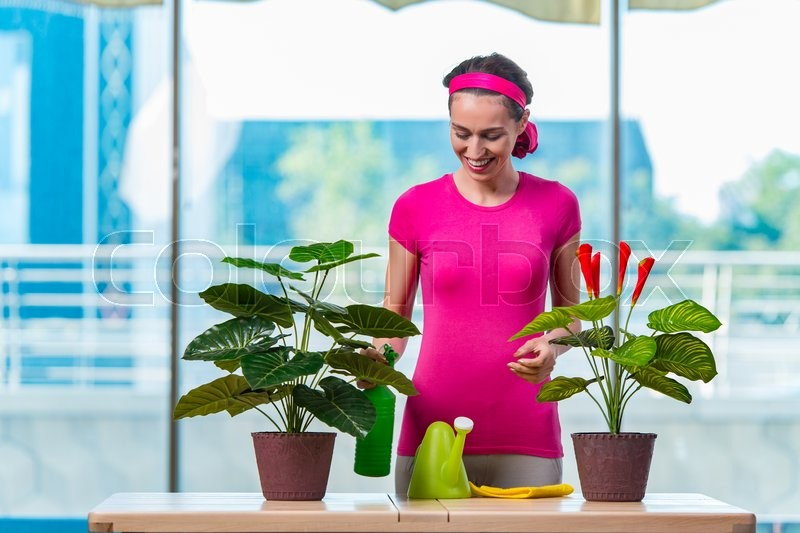 Stock image of 'Young woman taking care of home plants'