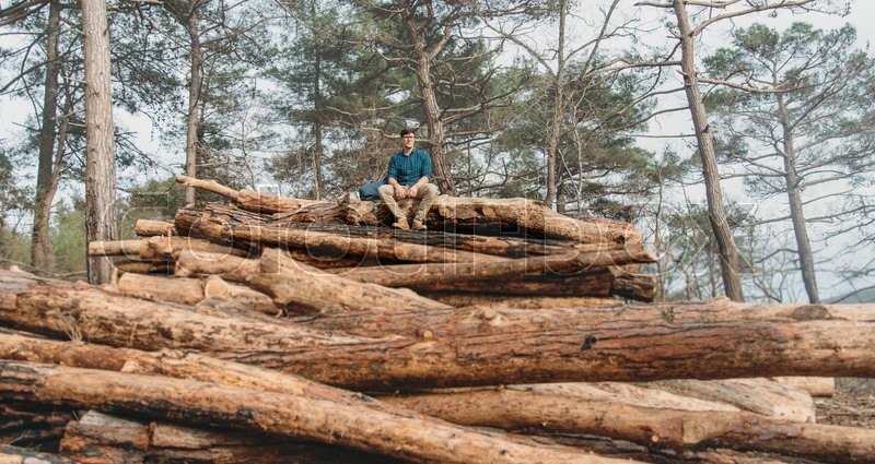 Stock image of 'Traveler young man resting on stack of tree trunks in the pine forest outdoor'