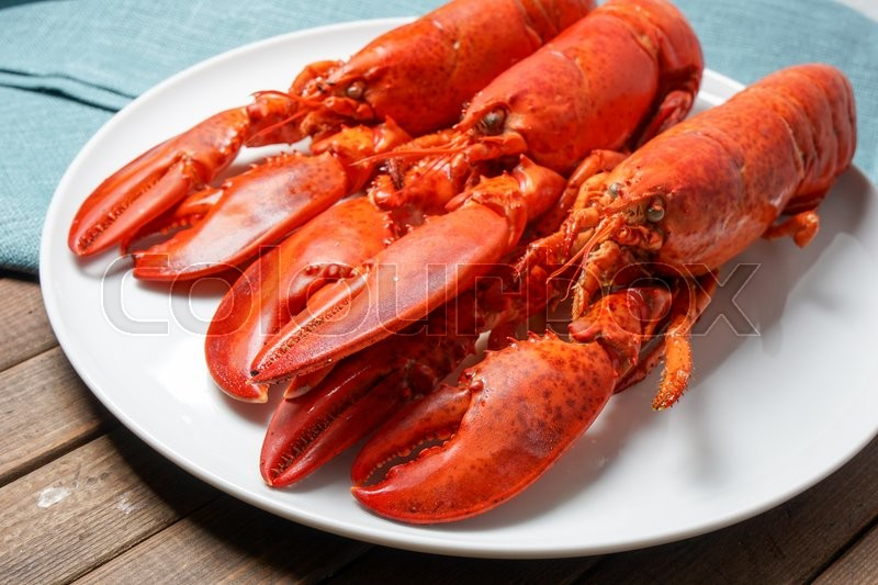Stock image of 'Cooked red Lobsters served on white plate ready for eating'
