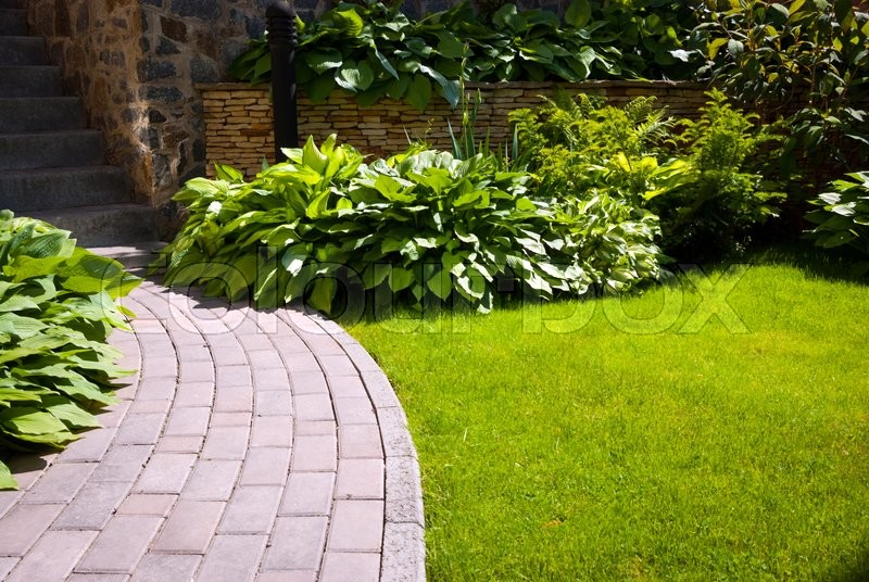 Stock image of 'Garden stone path with grass growing up between the stones'