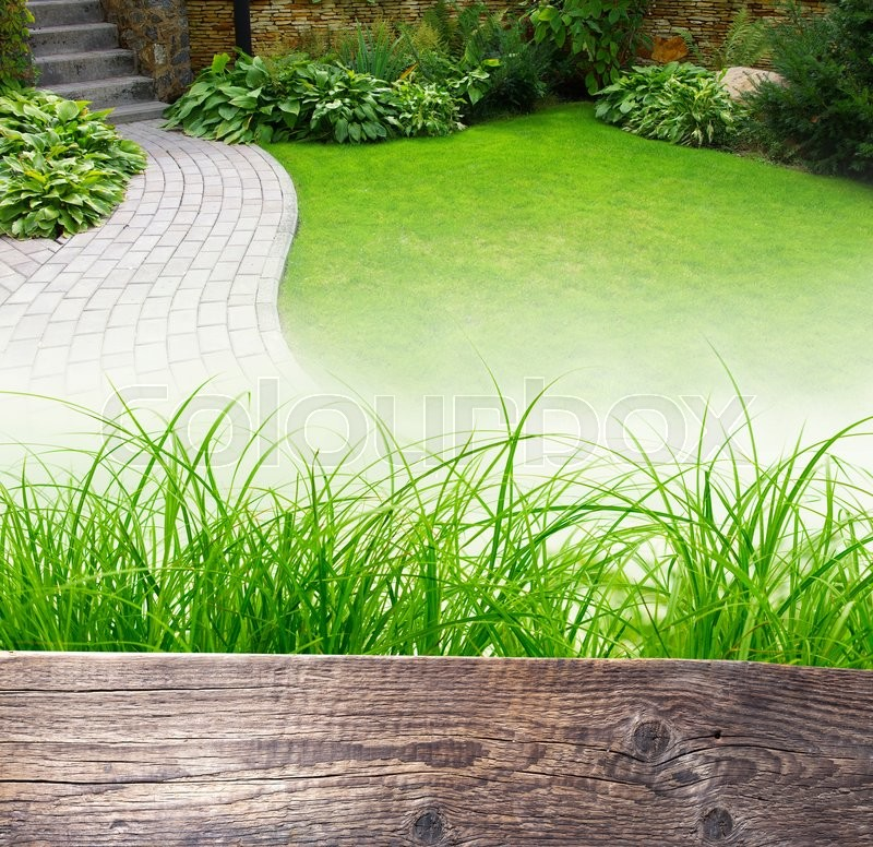 Stock image of 'Garden stone path with grass growing up between the stones. Wooden background for text.'