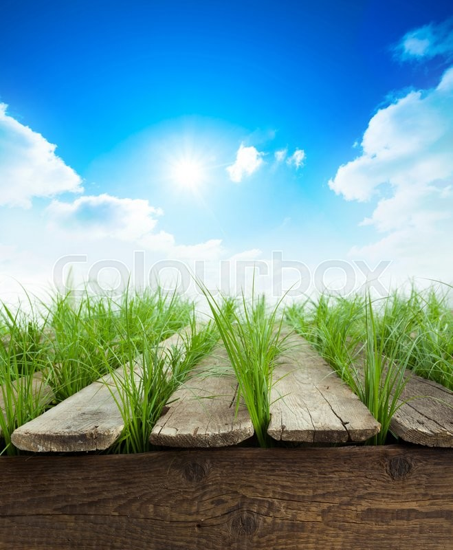 Stock image of 'Summer background with Wood table, green grass and sunlight'