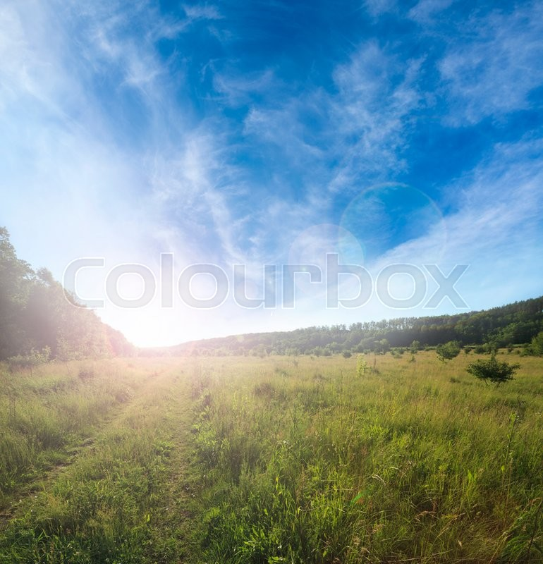 Stock image of 'Rural dirt road through the field'
