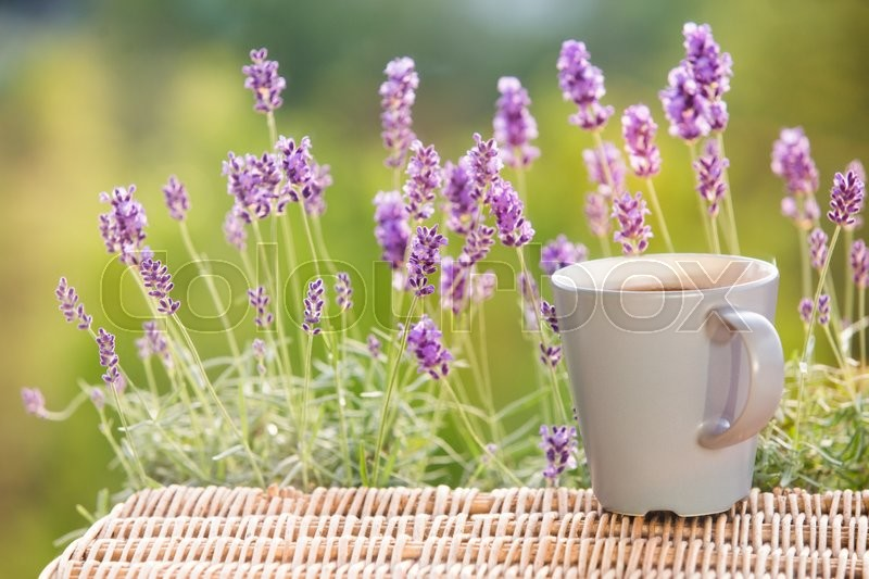 Stock image of 'Aroma coffee cup with lavender on saucer and beans.'