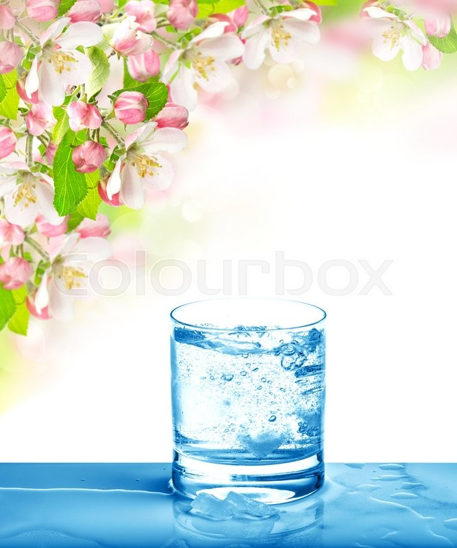 Stock image of 'Sparkling water in glass over bright nature background. Cold drink and spring flowers'