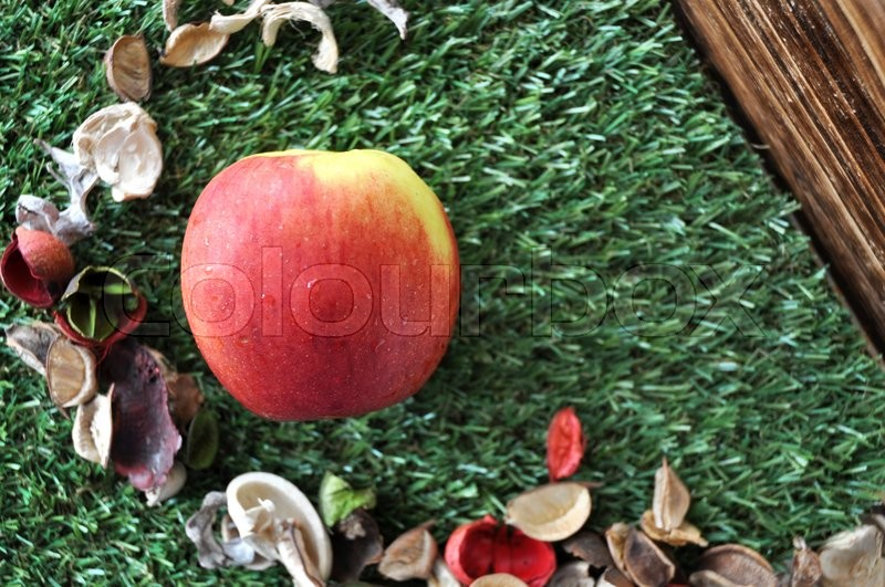 Stock image of 'Top view of fresh red apple on grass with dried plants and wooden background'