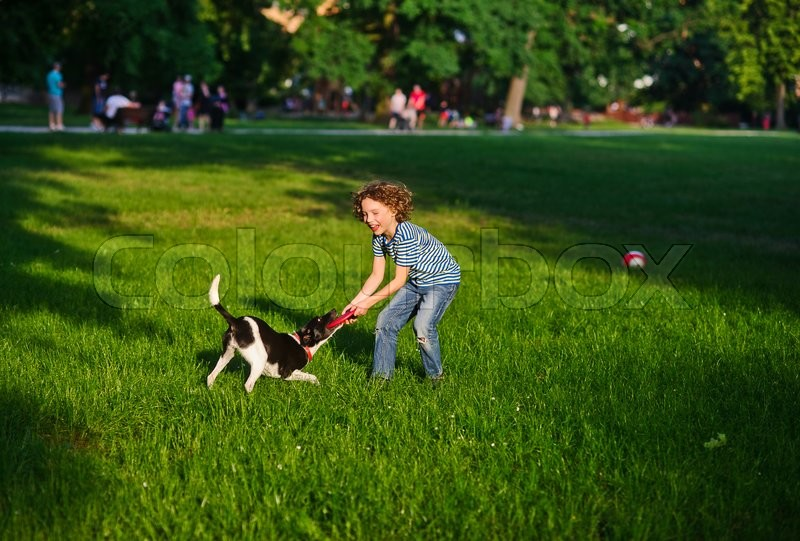 Stock image of 'The boy cheerfully plays with the dog in park in the summer. The dog to seize teeth at frisbee which is held in hand by her owner. Boy and dog delighted with game.On a background vacationers.'