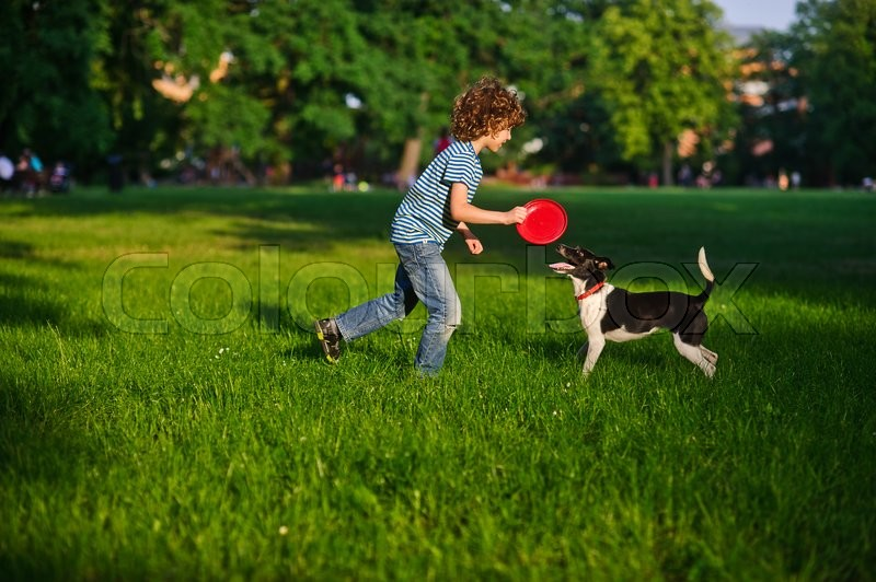 Stock image of 'Blonde boy playing with his black and white dog on the lawn in the park. Boy is holding a frisbee. His pet attentively looks at the owner. The doggy has raised a tail up. She likes game.'