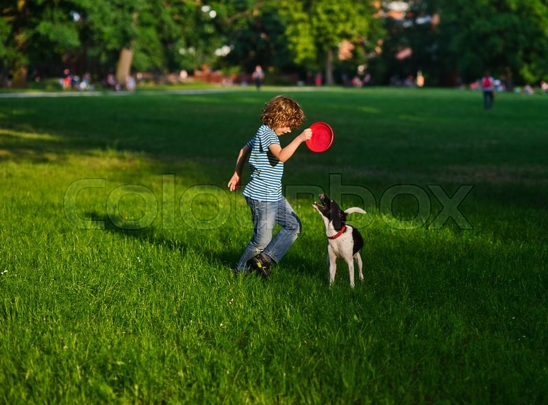 Stock image of 'The boy of 8-9 years trains the dog. He holds frisbee in hand. The dog looks at frisbee, having opened a mouth and having raised a tail up.On a green grass of a shadow from big trees.'