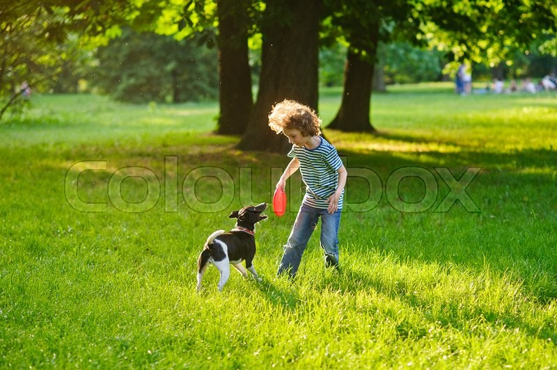 Stock image of 'The little fellow trains a dog in park. Boy is holding a frisbee. His pet attentively looks at the owner. The doggy has raised a tail up. She likes game.On a background trunks of big trees'