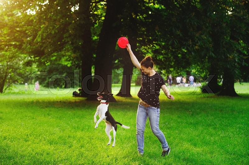 Stock image of 'Young woman playing with her dog in a park. She is holding a red disc. Dog tries to catch it. The woman smiles.A warm summer day. Dense green grass. Vacationers people in the background.'