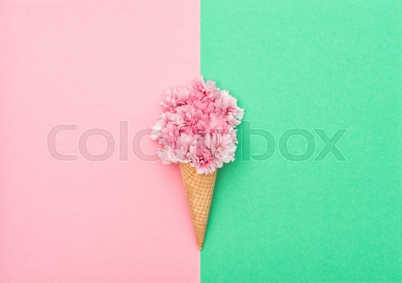 Stock image of 'Cherry tree blossom in ice cream waffle cone on hipster colors background. Styled flat lay. Minimal concept'