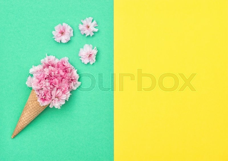 Stock image of 'Cherry tree blossom in ice cream cone on colored background. Spring flowers. stylish flat lay. Minimal concept'