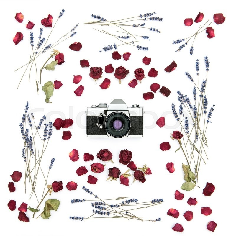 Stock image of 'Vintage film camera. Floral frame with roses and lavender flowers. Flat lay background. Dried plants'