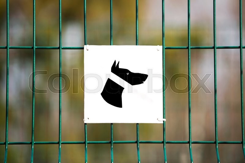 Stock image of 'the sign prohibiting walking dogs in a park'