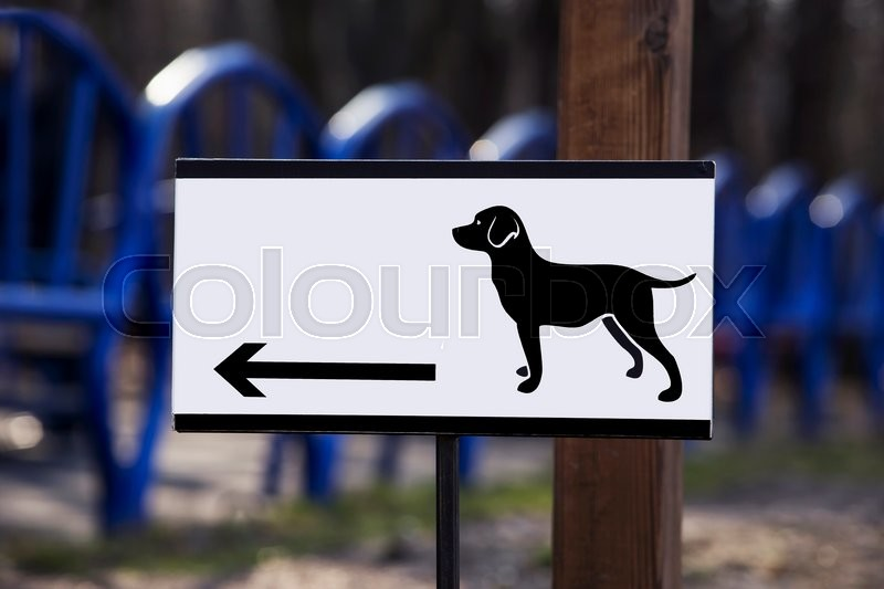 Stock image of 'a pointer to space for dog walking'