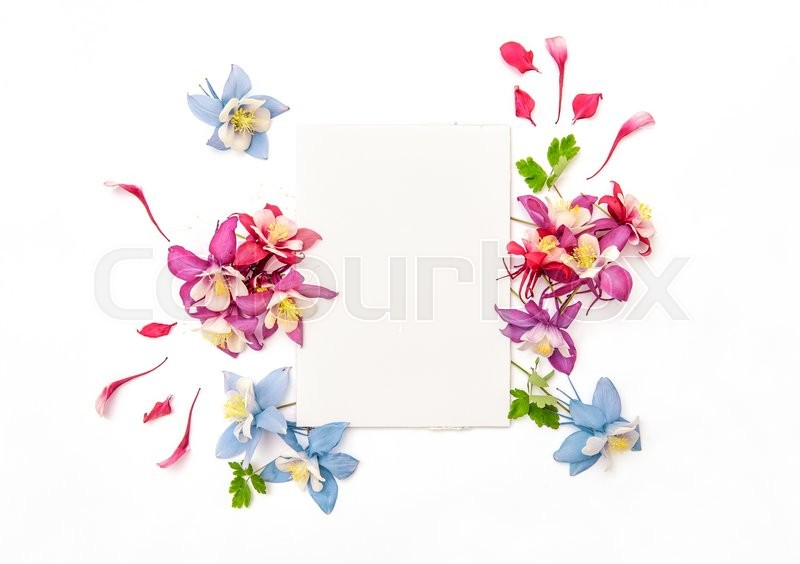 Stock image of 'Columbines flower frame with empty sketchbook. Flat lay background'