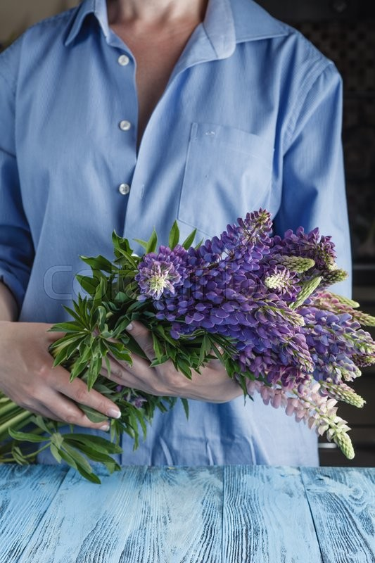 Stock image of 'Bunch of summer lupine flowers in hands'