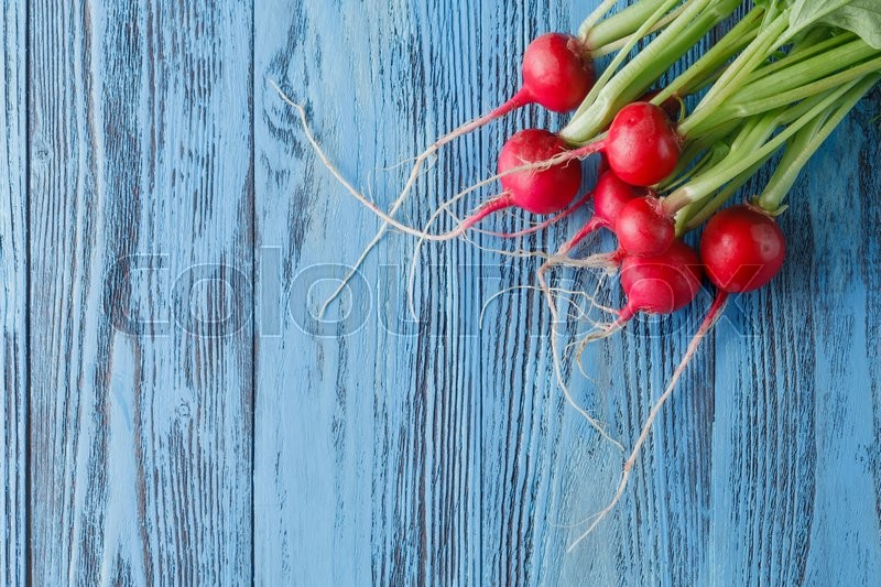 Stock image of 'The first harvest of a young radish against from blue colored boards'