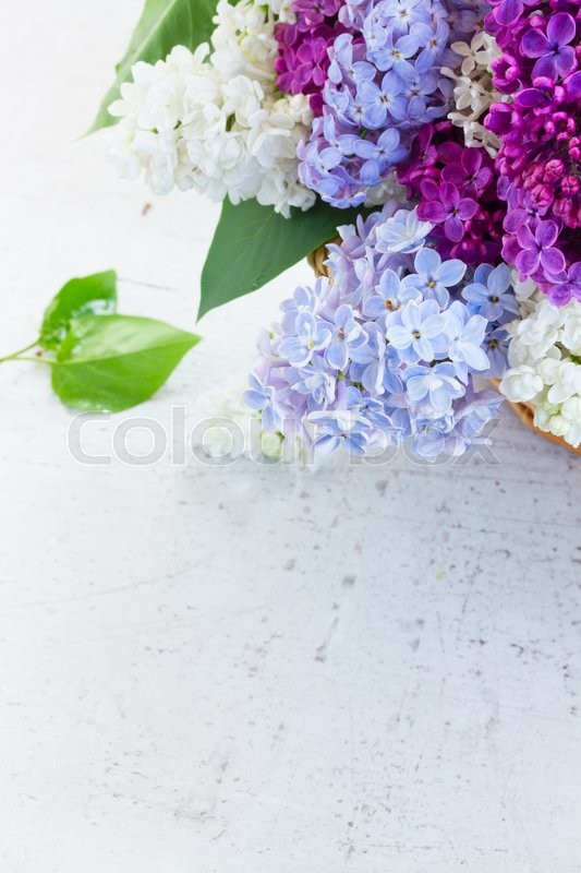 Stock image of 'Bunch of fresh lilac colorful flowers in basket with copy space on white table'