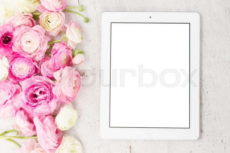 Stock image of 'Pink and white ranunculus flowers styled flat lay scene'