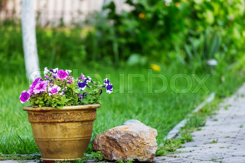 Stock image of 'Decor in the garden'