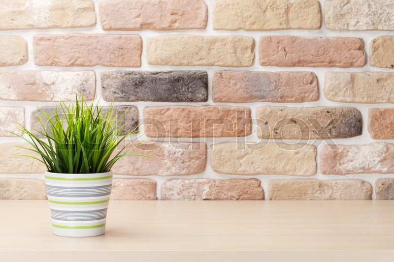 Stock image of 'Potted plant on shelf in front of brick wall. View with copy space'