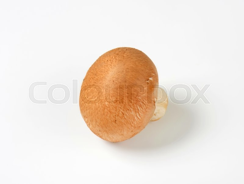 Stock image of 'Chestnut Mushroom also known as brown cap mushroom'