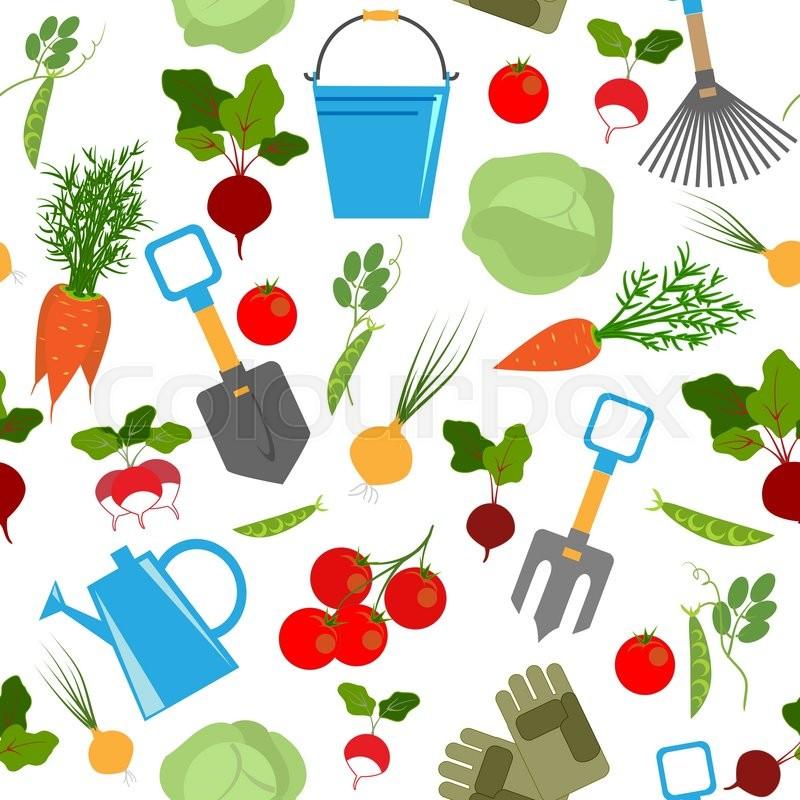 Fresh Vegetables And Garden Tools Stock Vector Colourbox