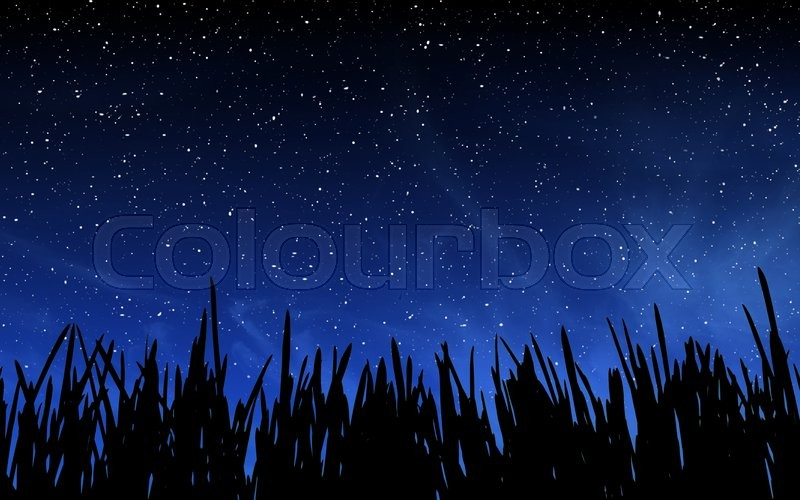 Stock image of 'Deep night sky with many stars and grass background'