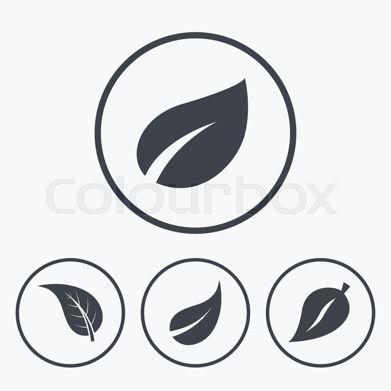 Leaf Icon Fresh Natural Product Symbols Tree Leaves Signs Icons