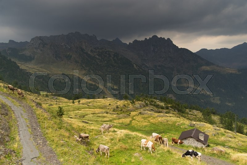 Stock image of 'Summer rain in Italian Alps of Lombardy'