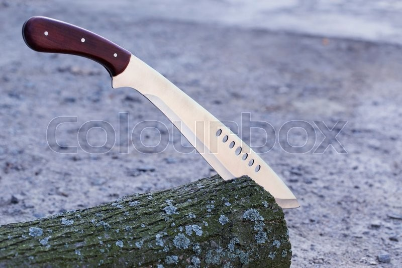 Stock image of 'the machete stuck in a tree stump'