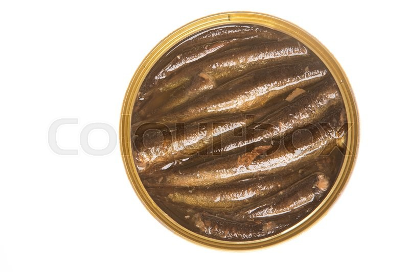 Stock image of 'Open can of sprats on a  isolated background'
