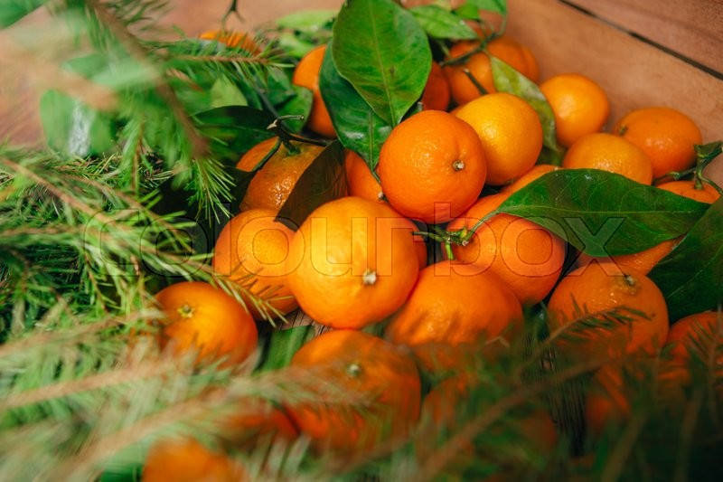 Stock image of 'many fresh mandarins and branches  of a Christmas tree on a wooden background'