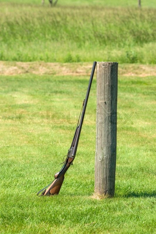 Stock image of 'Rifle standing against a wooden pole on a green meadow'