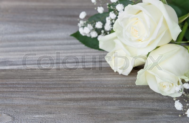 Stock image of 'Bouquet of white rose flowers lay on the gray background of old wooden boards, with space for text'
